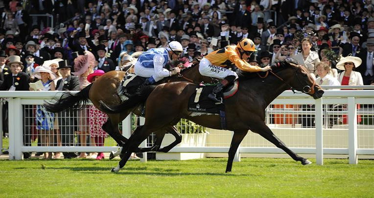 Punting on interest rates for the Melbourne Cup 2016