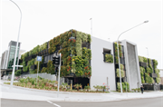 Greener cities could be key to Australia's COVID-19 recovery